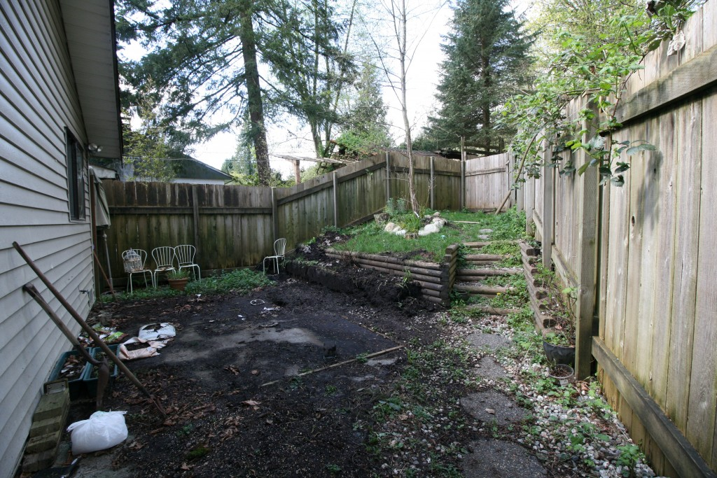 21-backyard-before
